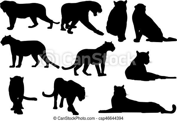 Negro, vector, silueta, ilustración, pantera.