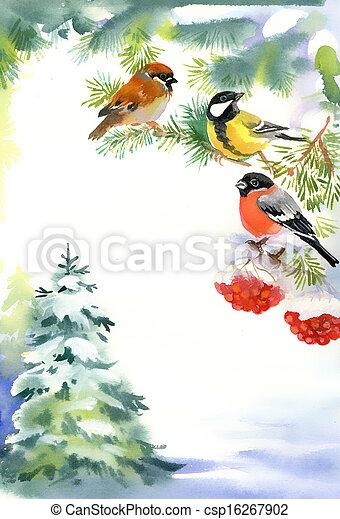 neige, bouvreuil, deux oiseaux - csp16267902