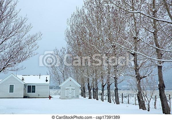nevada, parque, neve, eua, primeiro - csp17391389