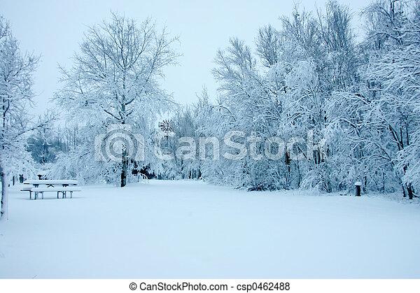 neve, árvores, carregado - csp0462488