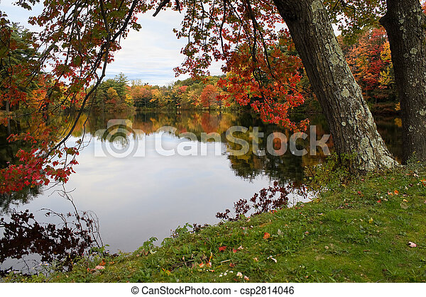 New England Foliage - csp2814046