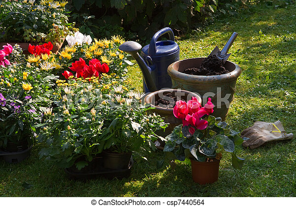 New plants in flowerpots for autumn garden - csp7440564