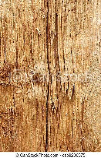 New wooden broken log - csp9206575
