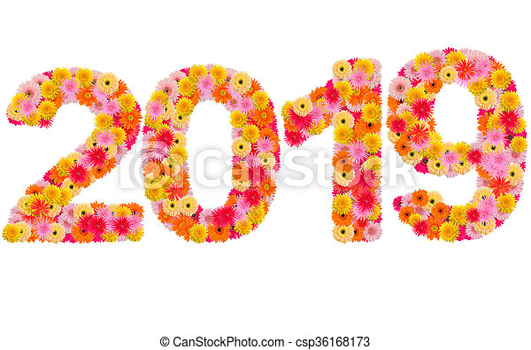 New year 2019 made from gerbera flowers isolated on white background - csp36168173