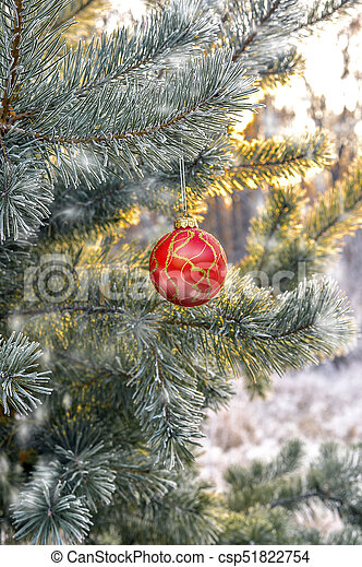 New Year\'s ball hanging on a branch of a Christmas tree in the forest.