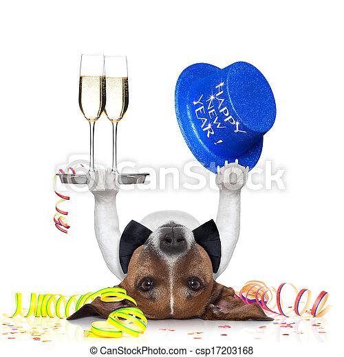new years eve dog - csp17203168