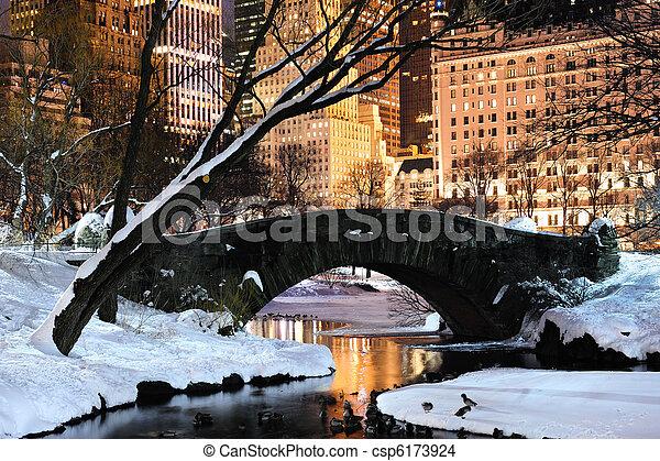 New York City Manhattan Central Park panorama at dusk - csp6173924