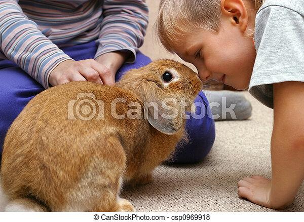 El chico del conejo - csp0969918