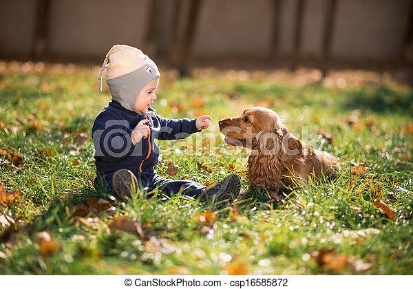 niño, pasto o césped, perro, sentado - csp16585872