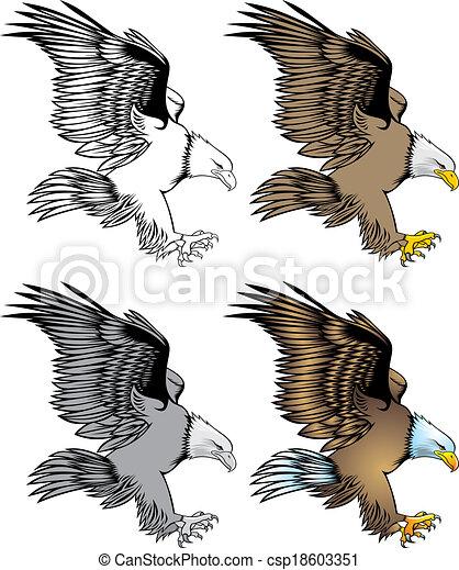 nice eagle - csp18603351