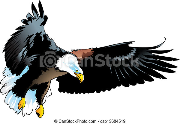 nice eagle nice illustrated eagle isolated on white vector clip rh canstockphoto com eagle vector graphics eagle vector files