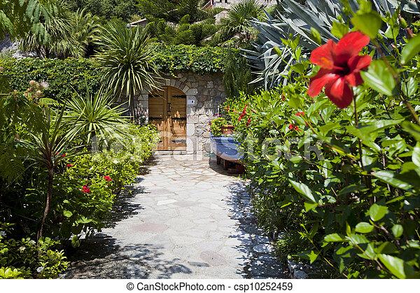 nice garden near the house, red flower - csp10252459