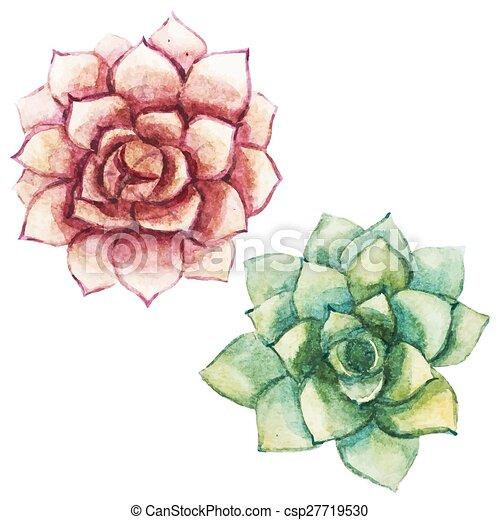 Nice watercolor succulents - csp27719530