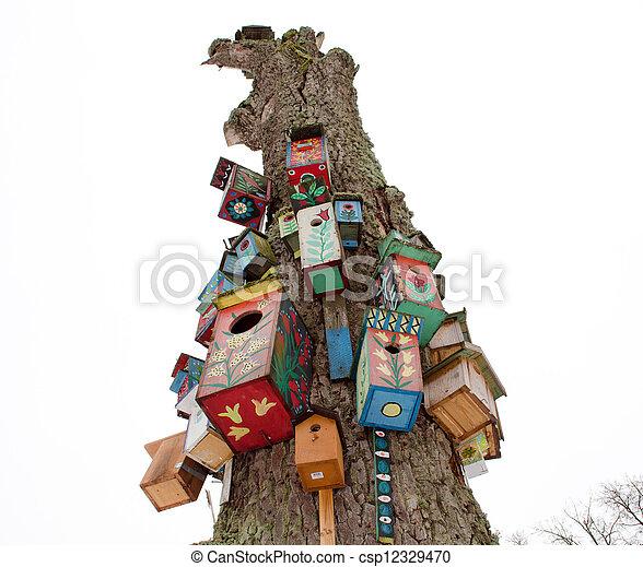 El viejo tronco de un árbol y colorido nido de pájaro cuelgan - csp12329470