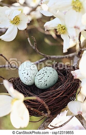 nido, primavera - csp12319855