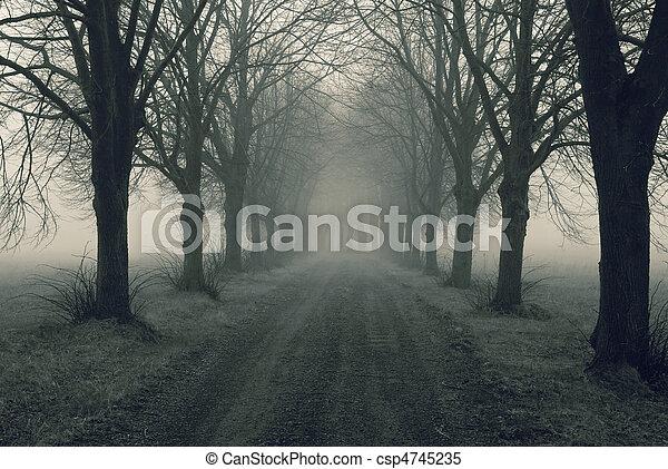 Avenida con niebla - csp4745235