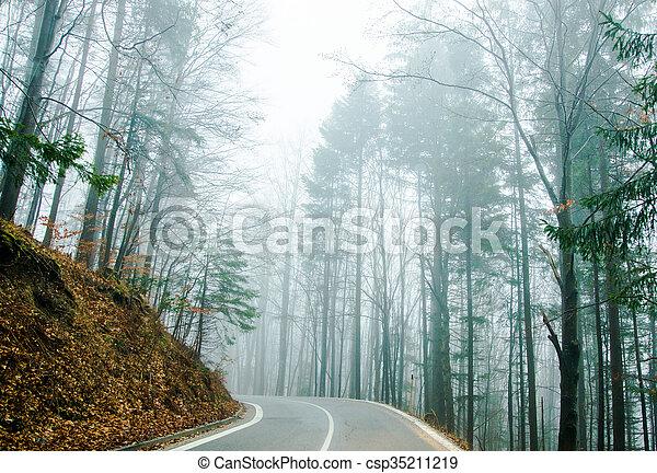 En la niebla - csp35211219