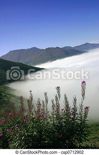 Sobre la niebla - csp0712902