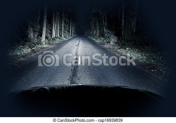 Night Driving Thru Forest - csp16939839