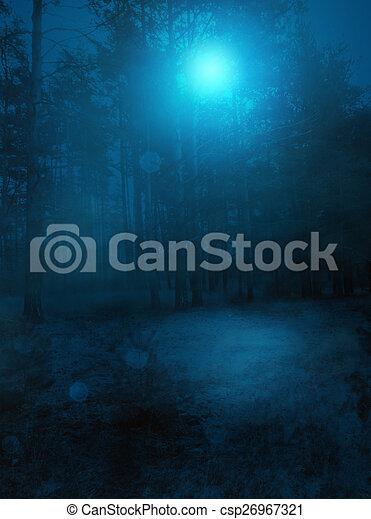 Night Forest - csp26967321