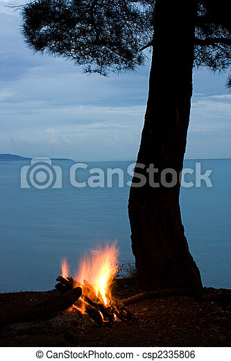 night scene: tree silhouette and campfire on sea background - csp2335806