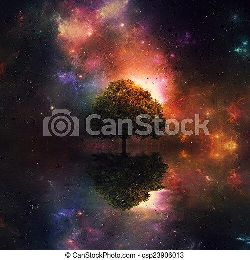 Night sky and tree - csp23906013