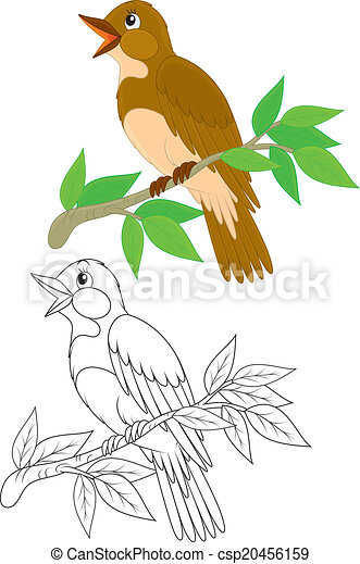 Nightingale Bird Clipart