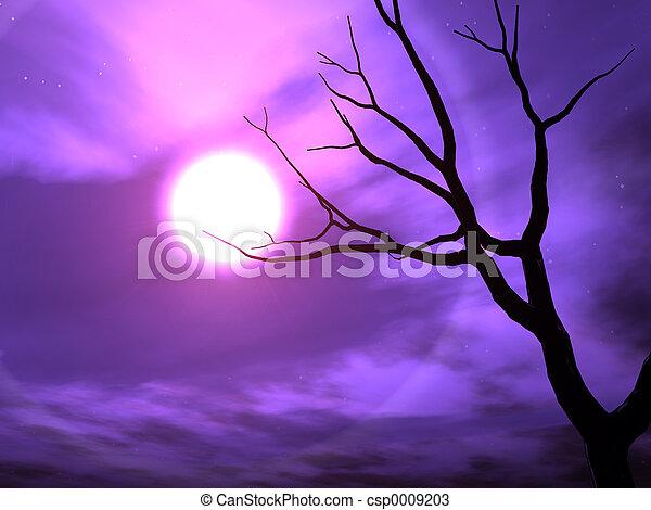 Nightshade - csp0009203