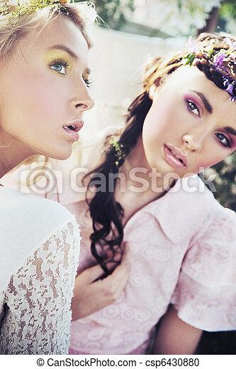 Dos hermosas ninfas de flores - csp6430880