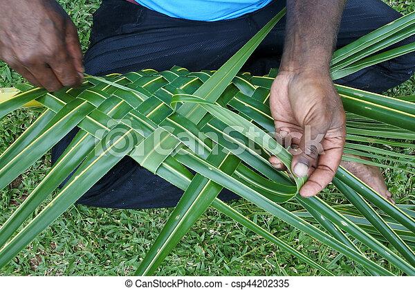 noce di cocco, tessitura, creare, uomini, fijian, palma, cesto, foglie - csp44202335
