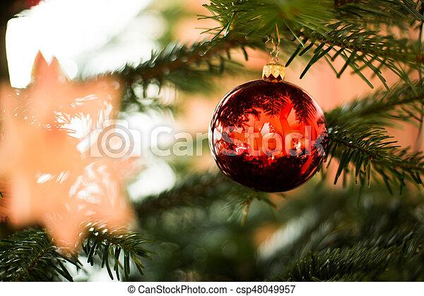 Nochebuena - csp48049957