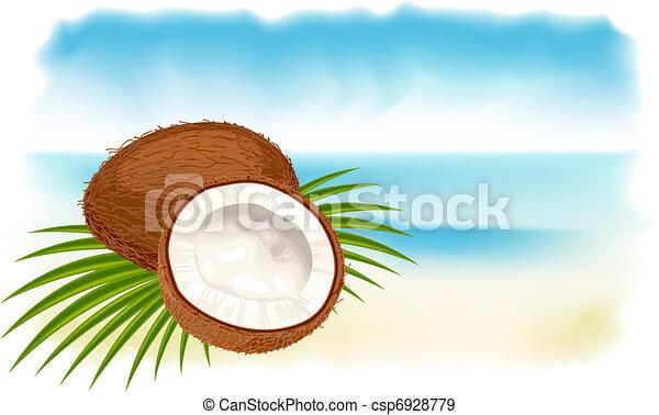noci cocco, spiaggia., maturo, mare - csp6928779