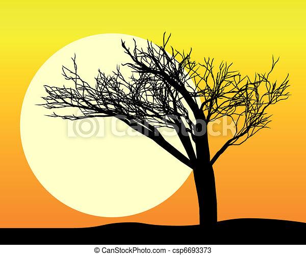 noir, silhouette, arbre - csp6693373