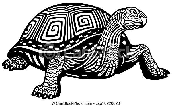 noir, tortue, blanc - csp18220820