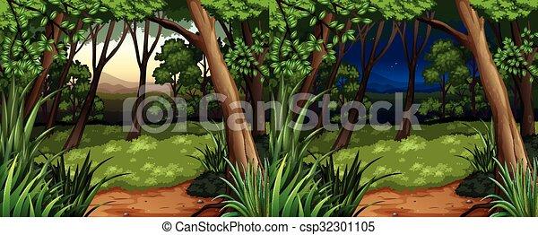 noite, cena, dia, floresta - csp32301105