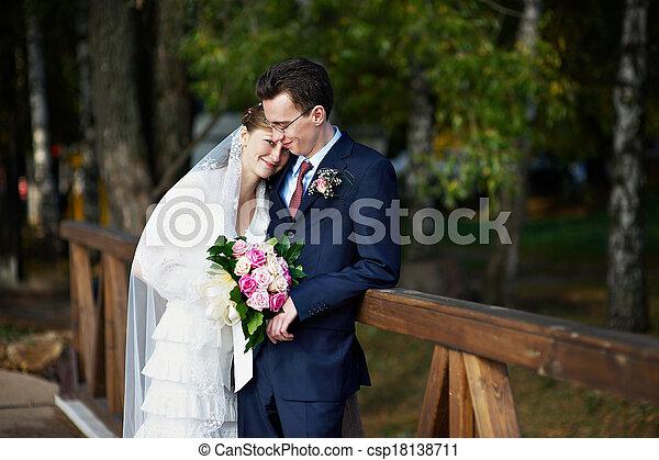 noiva, casório, noivo, passeio - csp18138711