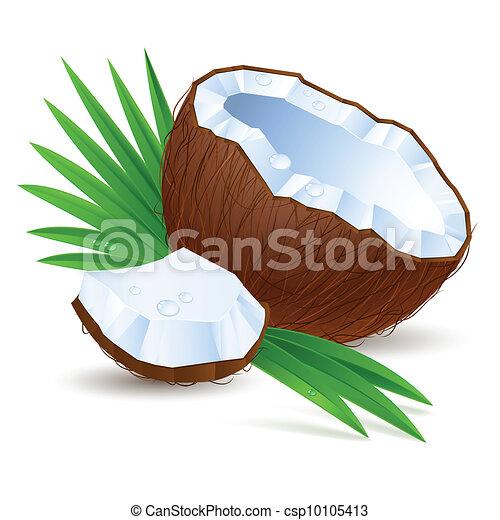 noix coco, moitié - csp10105413