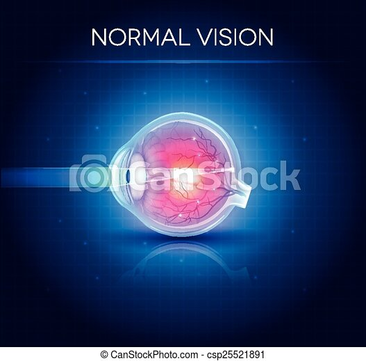 Normal eye vision. Bright blue background - csp25521891