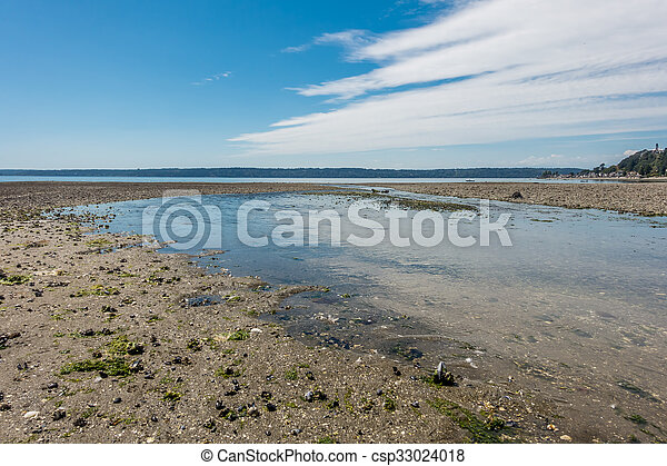 Normandy Park Stream 2 - csp33024018