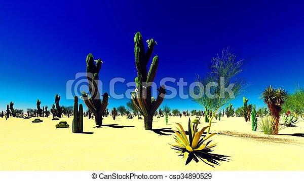 norteamericano, desierto - csp34890529
