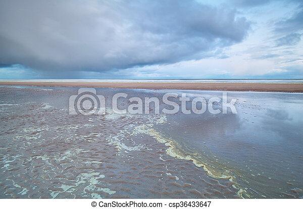 North sea beach at low tide - csp36433647