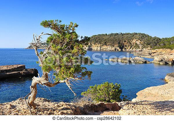 northern coast of Ibiza Island, Spain