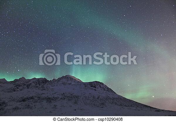 Northern lights (Aurora Borealis) - csp10290408