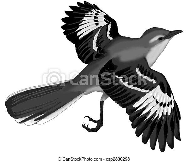 Northern Mockingbird Csp2830298 Coloring Page