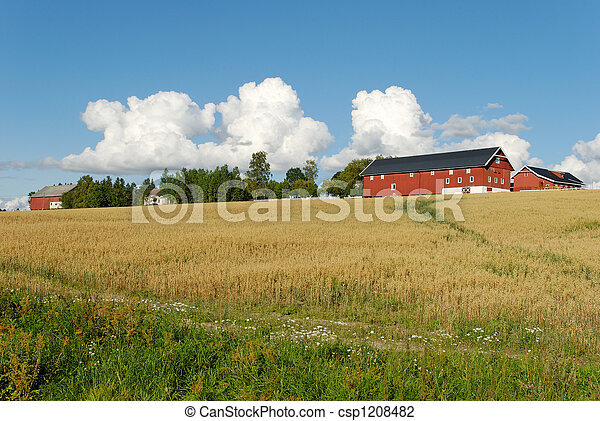 Norwegian Farm  - csp1208482
