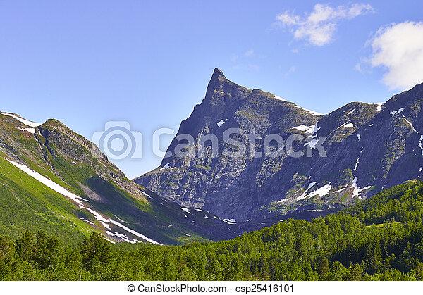 norwegian fjord - csp25416101