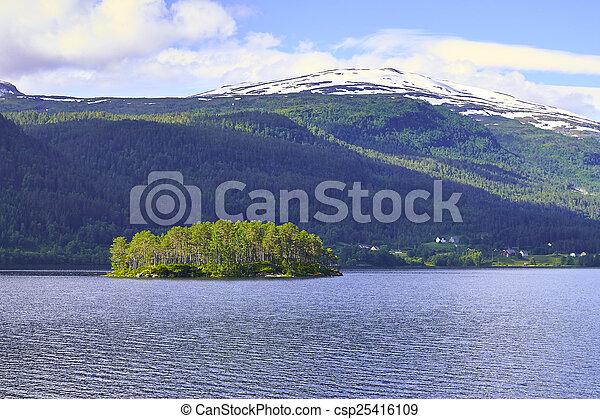 norwegian fjord - csp25416109