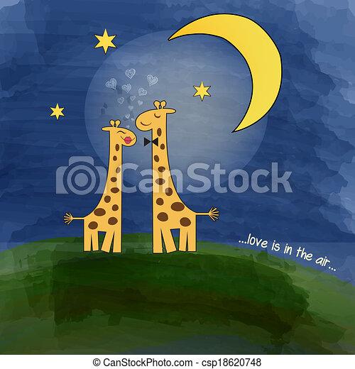 notte, amore, prato, giraffe - csp18620748