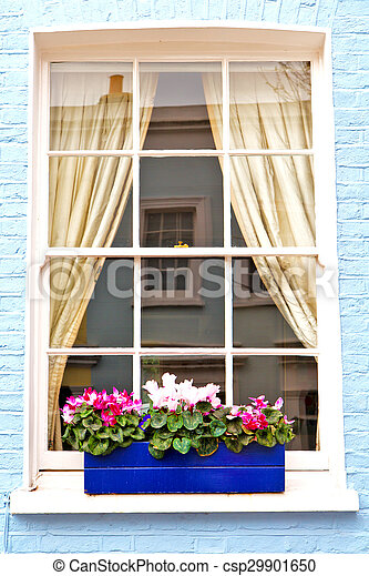 notting hill area in suburban and flowers - csp29901650