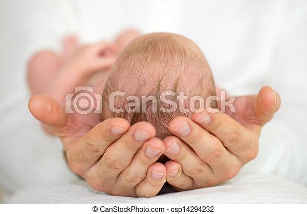 nouveau né, mains, adulte, tenue, baby. - csp14294232